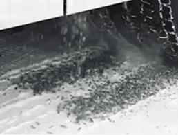 Bevogrip sandstøer fra Bevola